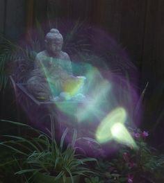 Glimpse of Spirit #23: Halo Child's Orbs ~ Aveen Banich