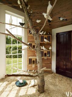 Christopher Spitzmiller's Garden at Clove Brook Farm Boasts an Elegant Dovecote birds perching on an Pigeon Nest, Pigeon Cage, Pet Pigeon, Pet Bird Cage, Bird Cages, Bird Aviary, Bird Perch, Fantail Pigeon, Pigeon Loft Design