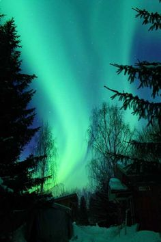 aurora borealis- I drove off the road while seeing this for the first time.  Amazing.