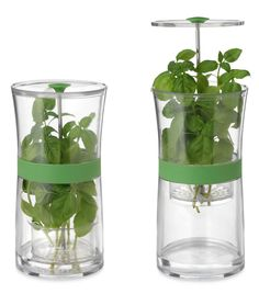 HERB KEEPER | Container, Storage, Fresh, Refrigerator | UncommonGoods