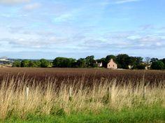 Moreham Burn. East Lothian. September 2013