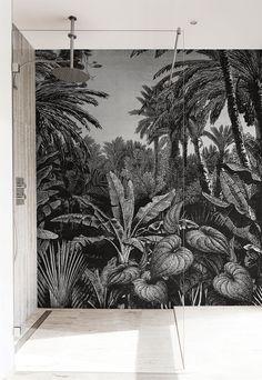 Les 429 Meilleures Images Du Tableau Ai Papier Peint Vegetal Sur