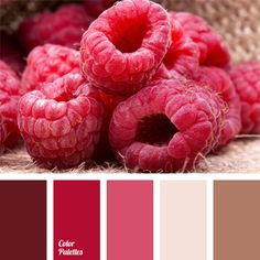 Range of shades of pink color: rich crimson, pale pink and pink-brown make up monochrome color palette. This color scheme can be used for picking up combinations of elements for a kitchen interior: decorative removable panels, summer curtains, tablecloths and napkins.