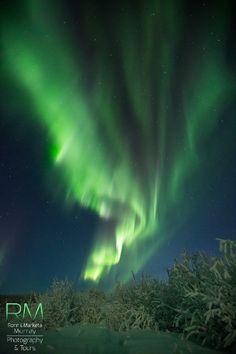 Aurora Borealis - Fairbanks, Alaska