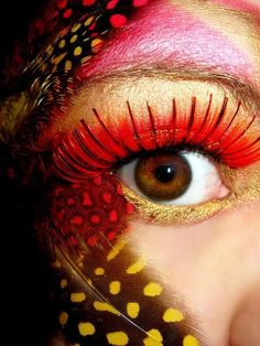 Jungle, Bird, Make-up, Feathers, Red, Yellow, Colorful, Stunning