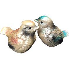 Shabby Chic Pearly Pastel Bird Salt & Pepper Shakers -- found at www.rubylane.com @rubylanecom #vintagebeginshere