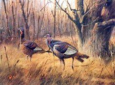 17074-James Killen The Wary Ones-Wild Turkey