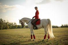 Arabian stallion Jevra SVA (Ibn Estasha x Riki's Scharischma), posing for fashion brand www.elpidea.com