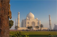Taj Mahal - In spite of its Muslim origin this white marble necropolis became an actual symbol of India. Serious security measures are taken to protect it. There is a special 500-meter security zone established around the complex.