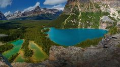 Lake O'Hara in Yoho National Park, British Columbia, Canada (© Nelu Goia/Shutterstock) – 2015-07-17  [http://www.bing.com/search?q=Lake+O'Hara&form=hpcapt&filters=HpDate:%2220150717_0700%22]