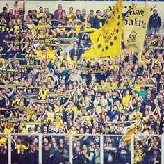 bvb09 on Instagram pinned by myThings Unser Block im Derby! // The away end at yesterday's derby!  #s04bvb #derby #revierderby #ruhrderby #bvb #dortmund #borussiadortmund #s04 #schalke #schalke04 #fcschalke04 #gelsenkirchen #arena #veltinsarena #fans #supporters #yellowwall #gelbewand #latergram