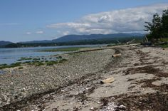 Rate, Review Beach: #Parksville Rathtrevor Beach Provincial Park.
