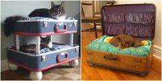 Repurpose a suitcase