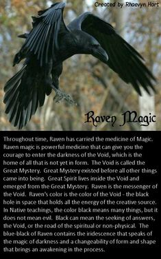 Wiccan Spell Book, Wiccan Spells, Magick, Raven Spirit Animal, Animal Spirit Guides, Raven And Wolf, Animal Symbolism, Native American Wisdom, Raven Queen