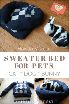 Does your pet have a favorite sweater? Or, did you shrink one in the dryer? Turn it into a super comfortable pet bed suitable for cats, dogs, bunnies, and more. Lit Chat Diy, Diy Cat Bed, Pet Beds Diy, Diy Dog, Bunny Beds, Pet Clothes, Dog Clothing, Dog Clothes Patterns, Animal Projects