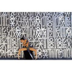 "Ballet Zaida on Instagram: ""Dancer - @kyliesheaxo Wearing - @maramacaleintimates #BalletZaida #kylieshea #maramacaleintimates #NationalDanceDay #RETNA #LA"""