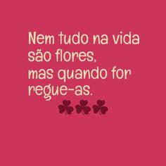 #frases #positividade