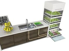Sleek hydroponic unit lets you grow a garden in your kitchen : TreeHugger.  Now I need the DIY version!  This one is too sterile looking for my house. #hydroponicsdiy