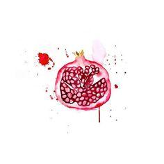 Blule+-+Pomegranate+-+tasty+watercolour+