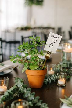 Bohemian Romance with Elegant Organic Style Terracotta Potted Herbs for Table Numbers Herb Wedding Centerpieces, Potted Plant Centerpieces, Wedding Table Decorations, Wedding Table Numbers, Table Centerpieces, Centrepieces, Unique Table Numbers, Wedding Plants, Decoration Plante