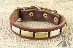 Fashion Leather Dog Collar with Brass Plates model by OldMillStore This wonderful dog collar is available in three colors and different sizes. You can choose black, brown or tan colors and best fitting size that vary from 14 up to 35 inches.