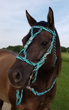 draft Jewellry dressage equine bling Ornament bridle show horse equipment Riding gift horse Bridle charm bit for pony