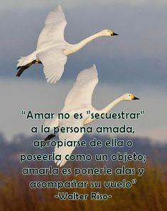 Amar no es secuestrar a la persona amada.... #Pensamientos #Frases #PensamientosYFrases #Amar #PersonaAmada #WalterRiso #Alas #Vuelo