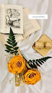 خلفيات ايفون ورد اصفر Iphone Wallpapers Download Nature Iphone Wallpaper Flower Iphone Wallpaper Cherry Blossom Painting