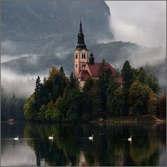 Lake Bled, Slovenia    http://fairyofnorwegianwood.tumblr.com