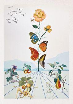 Autor: Salvador Dalí. Título: Flordalí II. Técnica: litografía y gofrado en color sin numerar firmado a lápiz por el artista en el margen inferior. Referencia Michler / Löpsinger 1995, p 179, n º 1587a Dat. 1981a. Medidas de la plancha 88x63 cm. Medidas del papel 96x67 cm.