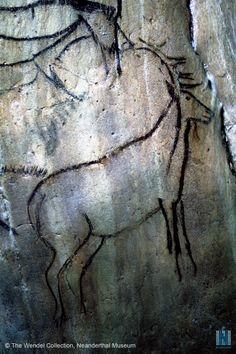 Magdalenian Era Cave Painting of Stag -- Grotte de Niaux, France… Ancient Art, Ancient History, Art History, Art Pariétal, Paleolithic Art, Cave Drawings, Art Ancien, Native American Art, Types Of Art