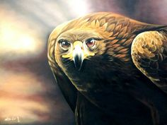 Oil paint animal Animal Paintings, Owl, Bird, Animals, Animais, Animales, Animaux, Animal Pictures, Birds