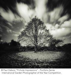 Darkroom Secrets: Proper Photography Techniques For Amateurs - http://princephotoblogger.princefamily33.com/2016/12/10/darkroom-secrets-proper-photography-techniques-for-amateurs/