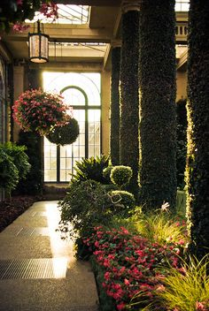 Longwood gardens.  I love the idea of ivy growing on columns.