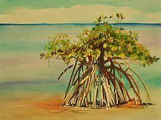 Florida Watercolor Painting - Keys Mangrove by Terry Arroyo Mulrooney
