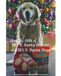 Give the Gift of #BLUESantaSnacks & BLUE Santa Stew. Holiday Gift Stocking Stuffers for Dogs #ad