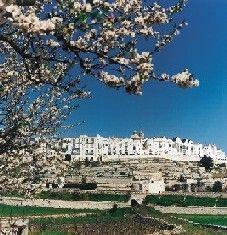 Locorotondo, province of Bari, Puglia Italy
