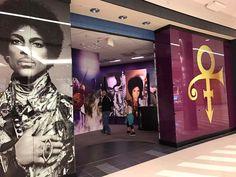 Photos on display @ Mall of America exhibit 2016