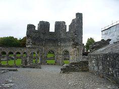 Mellifont Abbey Ireland Vacation, Ireland Travel, Dream Vacations, East Coast, Dublin, Trip Planning, Castles, Scotland, Places To Visit