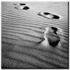 Il y a des êtres mystérieux, toujours les mêmes, qui se tiennent en sentinelles à chaque carrefour de notre vie. Patrick MODIANO