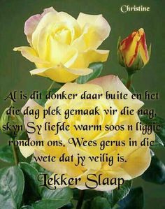 Good Night Wishes, Good Morning Good Night, Good Night Quotes, Evening Greetings, Afrikaanse Quotes, Goeie Nag, Sleep Tight, Mornings, Gallery