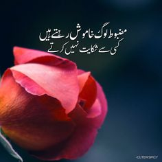 50 Most beautiful Urdu Whatsapp status of all time 50 most beautiful urdu whatsapp status of all time, urdu status, short status for Whatsapp in Urdu, best whatsapp status in urdu Inspirational Quotes In Urdu, Urdu Quotes Islamic, Sufi Quotes, Islamic Messages, Poetry Quotes, Truth Quotes, Deep Quotes, Hindi Quotes, Wisdom Quotes