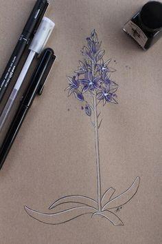 "Day 7: Xacinto bravo (Jacinto silvestre) ""Hyacinthoides paivae""  #InkTober #InkTober2016 #InkToberEspaña #FloraDaGaliza Inktober, Drawings, Sketches, Drawing, Portrait, Draw, Grimm, Illustrations"