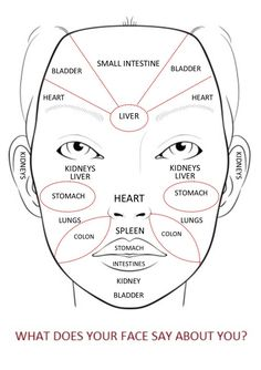 Acupuncture Holistic Healthcare Chinese Medicine Face Reading Map for Health Chinese Face Map, Chinese Face Reading, Doterra Acne, Ayurveda, Gesicht Mapping, Face Mapping, Acne Causes, Heart And Lungs, Stencil