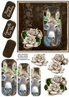 Grey Donkey on Craftsuprint designed by Hilary Hallas - A 6x6 card front with pyramid and decoupage layers and choice of sentiment tags featuring a gorgeous grey donkey with silver cream rose and pearl decoration. Matching insert available separately. - Now available for download!