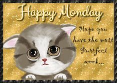 Monday morning greetings for the week. Free online Good Morning & Happy Monday ecards on Everyday Cards Monday Morning Greetings, Morning Hugs, Good Morning Happy Monday, Cute Good Morning Quotes, Good Morning Cards, Morning Wish, Monday Ecards, Happy Monday Images, Cute Quotes