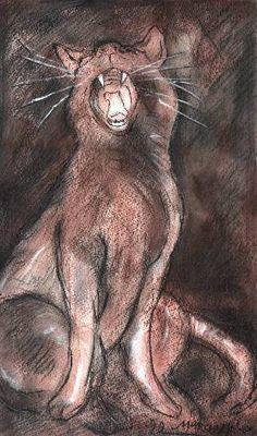Marcio Melo, Yawning Cat