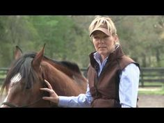 Linda Parelli on Horsenality and Horse Behavior - YouTube