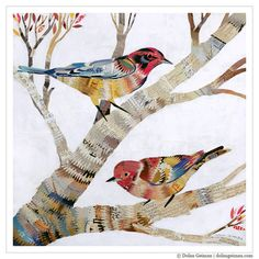 Colorful Birds in Tree Branches, The Warblers, Giclee Art Print on Paper. $85.00, via Etsy.