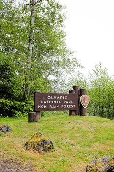 Here are 4 Things to Do in Olympic National Park Washington in 48 hours. This was one of our favorite places to visit up in the Pacific Northwest.